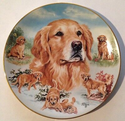 "Golden Retriever - Faithful Friend - 8 1/4"" - 2003 Bradford Plate Collection"