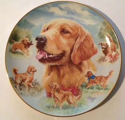 "Golden Retriever - Best Buddy - 8 1/4"" - 2003 Bradford Plate Collection"