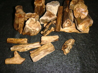 Mcdermitt Petrified Wood Full Round Sticks    1  1/4 Pounds  Oregon