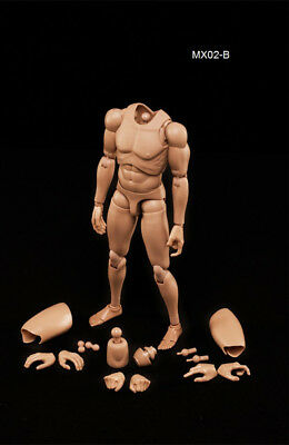 1/6 Scale NEW Version Highly Cost-Effective Edge Male Body Series Asian Skin