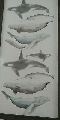 RESTORATION HARDWARE Baby & child Animal Portrait - WHALES