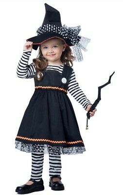 Crafty Witch 3 piece Halloween Costume Toddler Girls M 3-4 NEW So Cute!!