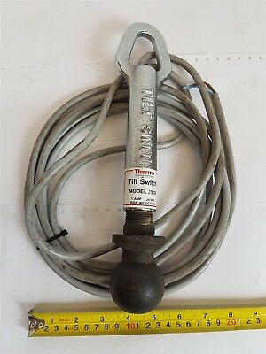 Thermo Scientific 15406 Tilt Switch 20-39 + 4.5m cable (1-201001) 24VDC 1A Hitch