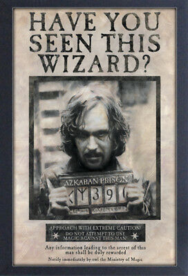 HARRY POTTER SIRIUS BLACK 13x19 FRAMED GELCOAT POSTER MOVIE GIFT MAGIC HOGWARTS!