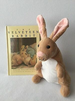 Kohls Cares The Velveteen Rabbit Stuffed Animal Plush Hardcover