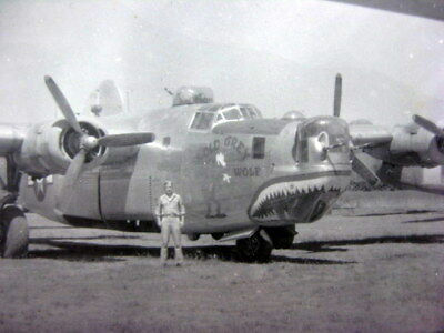 VTG WWII Photo B-24 Bomber OLD GRAY WOLF  #42-51924 459TH Bombardment Group