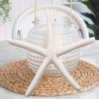 6/12Pcs Beautiful Finger Starfish Beach Wedding House Crafts Decor Toys Gift PAN