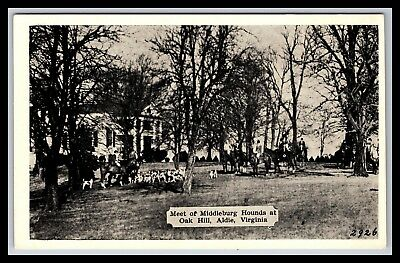 Aldie Virginia Meet Of Middleburg Hounds Dogs At Oak Hill Postcard