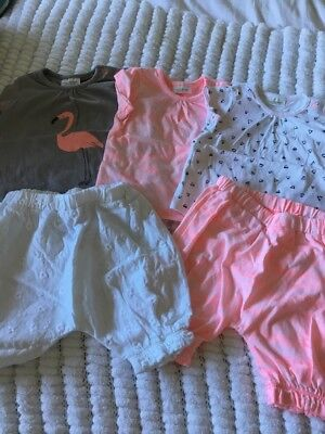 Baby Girl Tshirt X3 Shorts X2 5 Items Bundle 0-3 Months NEXT NEW LOW POSTAGE