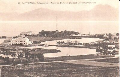 Carte Postale - Afrique - Tunisie - Carthage - Salammbo - Anciens Ports