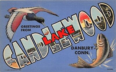 Danbury Connecticut CT Greetings From Candlewood Lake Duck Large Letter Linen PC
