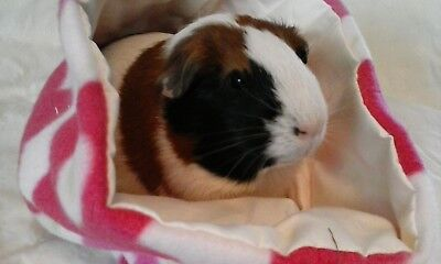 Chucklebunnies Guinea Pig cuddle bed pocket for 1 recycled fabric pink flowers
