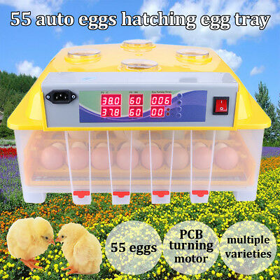 55 Oeufs Automatique Incubator Turner Hatch Poulet Duck Quail Train Motor 220V