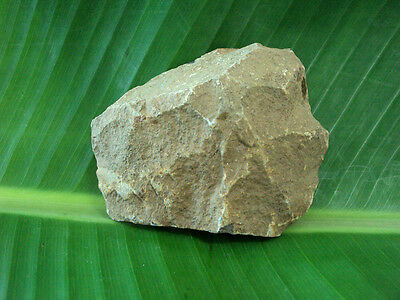 Prehistoric Neolithic Polished Flint Stone Axe Ancient Artifact Butted Tool