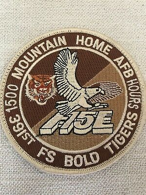 1500 HOURS, DESERT TAN, 391st FIGHTER SQUADRON, MOUNTAIN HOME AFB, TIGERS, F-15E