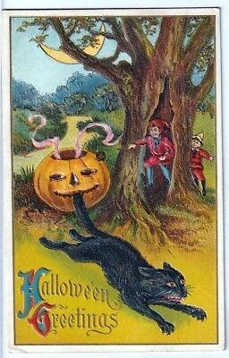 Halloween Vintage Pc~Early View ~Scared Black Cat And Children In Forest