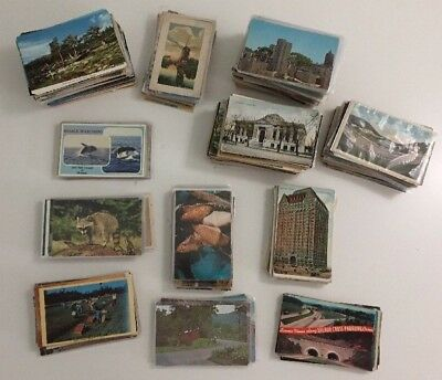 Huge Mixed Postcard Lot of 600 Postcards US Scenic Standard Continental Animals