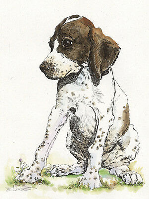 ENGLISH POINTER Original Watercolor on Ink Print Matted 11x14 Ready to Frame