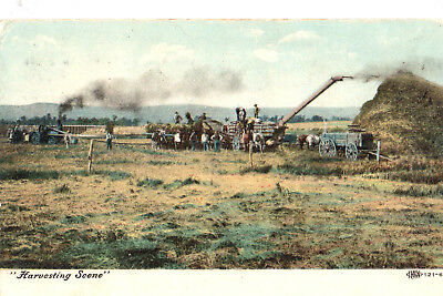 Harvest Time On The Farm, 1910, With Equipment & Many Men, Horses.poem, Great Pc