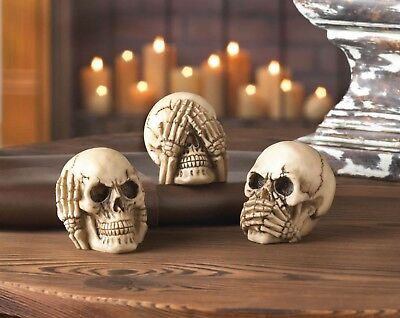 See Hear Speak Trio Dragon Crest Skulls 10017293 No Evil Skull 3 Pc Set New