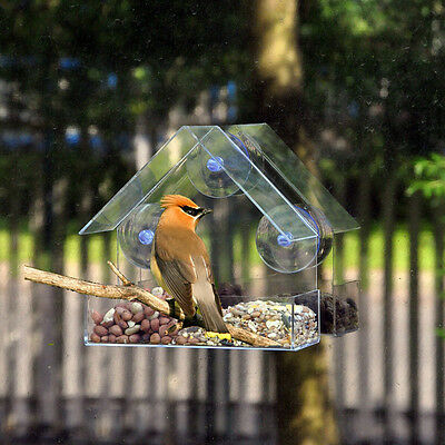 Clear Glass Window Viewing Bird Feeder Hotel Table 00Seed Peanut Hanging Suction