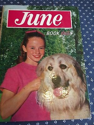 Collectable Annuals June Book 1965