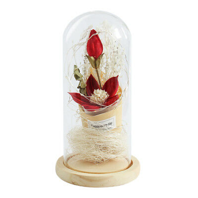 Flower LED Light String in Glass Dome on Wood Base Gift for Mothers' Day