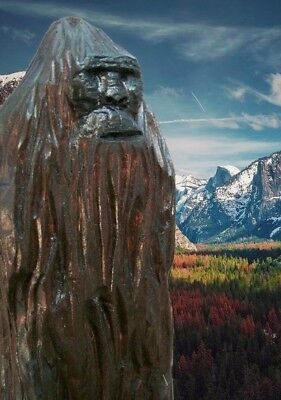 """""""SASQUATCH"""" my hand carved & signed wood figure"""