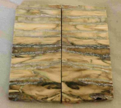 Siberian Mammoth Tooth Scales Stabilized 75 mm x 32 mm x 4.0 mm #MT24