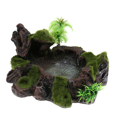 Plant Moss Decor Reptile Feeding Bowl Tortoise Gecko Lizard Water Dish