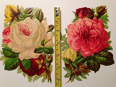 Two Large Antique Victorian Scrap Roses