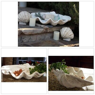 Large Clam Shell Decor Beach Tabletops Buffets Dressers Display Hand Crafted New