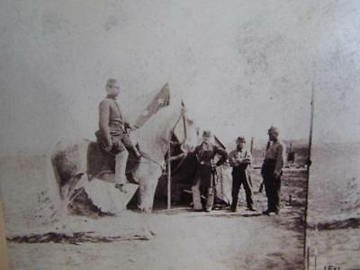 Antique Civil War Stereoview Card Photo, Army Of The Potomac, Camp Life #1503