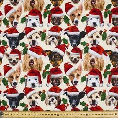 Christmas Dogs Holly Quilting Fabric