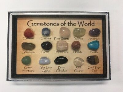 """Gemstones Of The World"" Crystal Collection In Display Case"