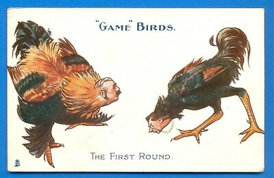 Game Birds.the First Round.tucks Fiscal Postcard