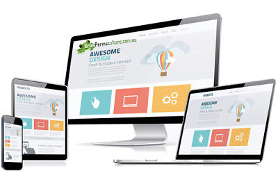 Business Website including Domain and Hosting