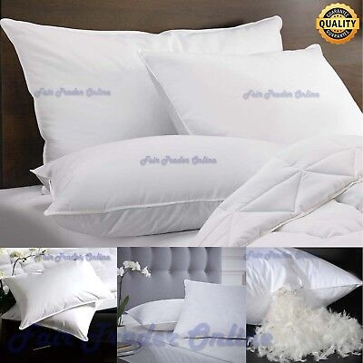 2 x NEW PREMIUM LUXURY GOOSE FEATHER & DOWN PILLOWS SOFT PILLOW PAIR WITH COVER