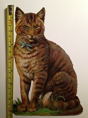 Very Large Antique Victorian Scrap Of A Cat