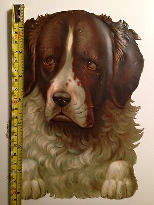 Large Antique Victorian Scrap Of A Dog Face