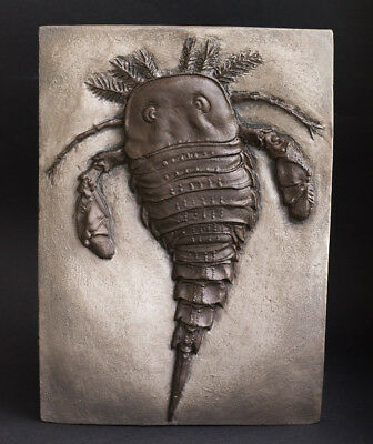 Fossil dinosaur - High quality Replica Fossil sea scorpion - Mixopterus kiaeri