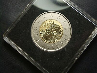 2013 Canada Specimen Special Edition $2 Coin - Young Wildlife - Black Bear