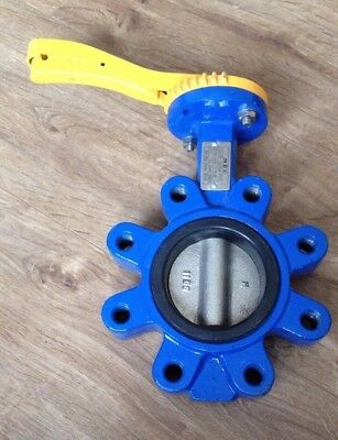 Cast Iron Wafer Butterfly Valve - Epdm Seat, D1 Disc D80