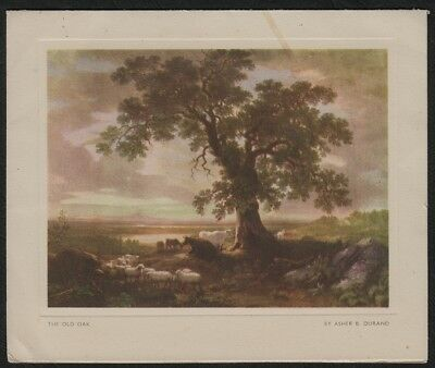 e1728)           1950s GREETINGS ART CARD -  'THE OLD OAK'   By ASHER B DURAND