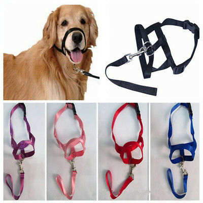 Dog Strap Leader Head Collar Halti for Small Large Dogs Muzzle