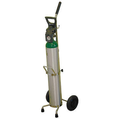 SAFTCART Steel Cylinder Trolley,38 In. H,100 lb., MDE-6X, Silver