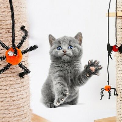 1pc Halloween Dog Cat Ropes Toys Bat Spider Knotted Pet Puppy Finger Teasing Toy