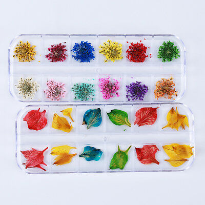 24 Colors Nail Art Dried Flowers 3D Flower Nails Stickers Tips Decor Tool LH