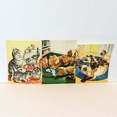 Vintage FIVE Quantity Cat Prints - 3 Illustrations - 2 Photos by Walter Chandoha