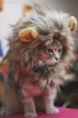 046A 96EA Pet Hat Lion Mane Wig For Cat Halloween Fancy Dress Up With Ears Party